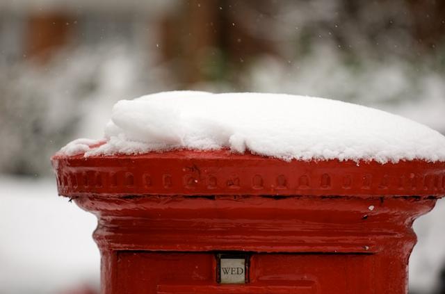 Snow Jan 2010 11
