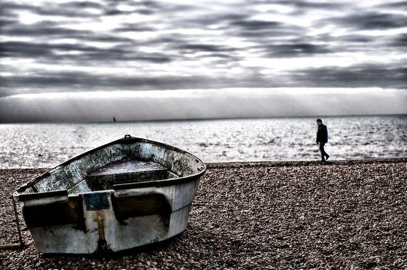 Brighton 44
